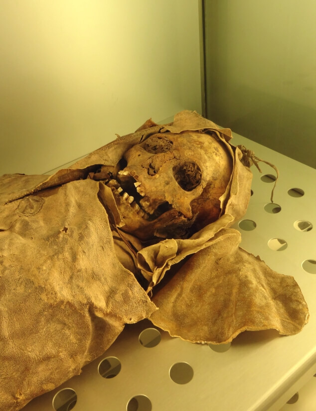 An ancient Guanche mummy at The Museum of Nature and Man